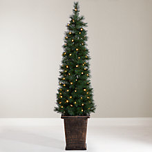 Buy John Lewis Pre-Lit Pencil Pine Potted Christmas Tree, 5ft Online at johnlewis.com
