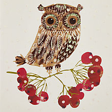 Buy John Lewis Owl And Berries Charity Christmas Cards, Pack of 6 Online at johnlewis.com