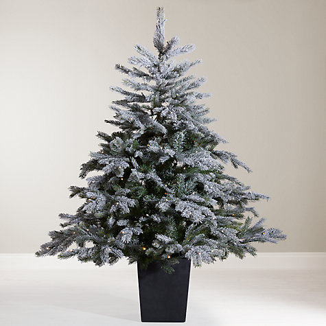 Buy John Lewis Isla Mist Pre-Lit Potted Christmas Tree, 4.5ft Online at johnlewis.com
