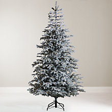 Buy John Lewis Isla Mist Pre-Lit Christmas Tree, 7ft Online at johnlewis.com