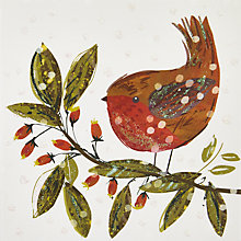 Buy John Lewis Robin And Branch Charity Christmas Cards, Pack of 6 Online at johnlewis.com