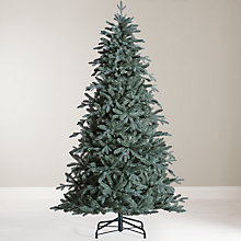 Buy John Lewis Mitsuko Serbian Blue Spruce Christmas Tree, 7ft Online at johnlewis.com