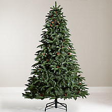 Buy John Lewis Sophia Spruce Christmas Tree, 7ft Online at johnlewis.com