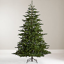Buy John Lewis Peruvian Pine Christmas Tree, 7ft Online at johnlewis.com