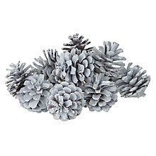 Buy John Lewis Winter Palace Bag of White Glittery Pinecones Online at johnlewis.com