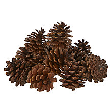 Buy John Lewis Highland Myths Copper Sprinkled Pinecones Online at johnlewis.com
