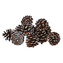 Buy John Lewis Bag of White Frosted Pinecones, Natural/White Online at johnlewis.com