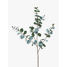 Buy Peony Artificial Eucalyptus Single Stem Online at johnlewis.com