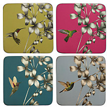 Buy Harlequin Amazilia Coasters, Pack of 4 Online at johnlewis.com