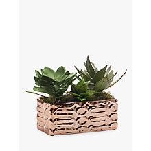 Buy Peony Artificial Succulents in Copper Tray Online at johnlewis.com