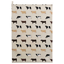 Buy Sophie Allport Cow Tea Towel Online at johnlewis.com