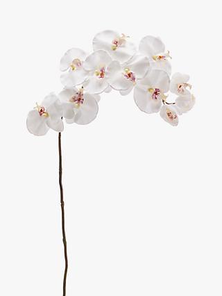 14625e4633fb Peony Artificial Phalaenopsis Orchid Single Stem
