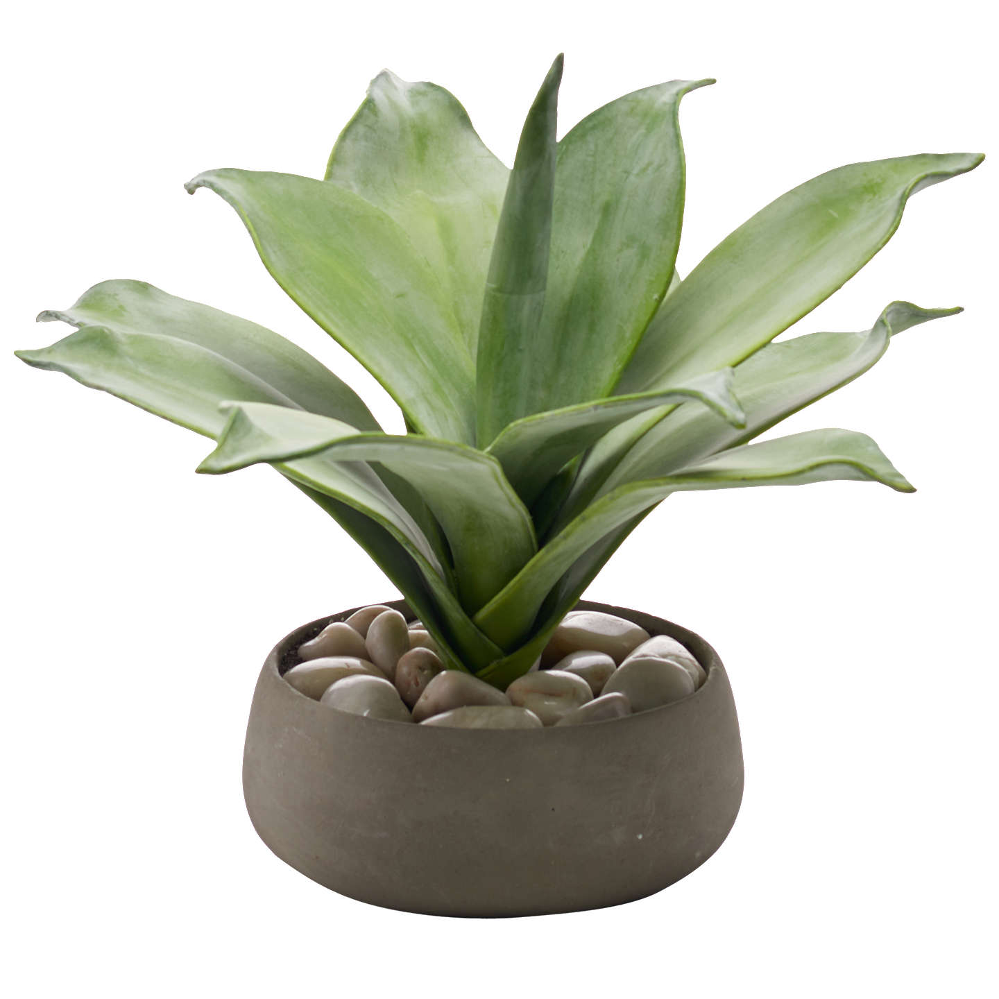 Peony Artificial Scandi Aloe Plant In Ceramic Pot by Peony