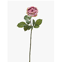 Buy Peony Artificial Vintage Single Stem Rose, Pink Online at johnlewis.com