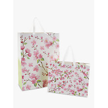 Buy John Lewis Blossom Flitter Gift Bag Online at johnlewis.com