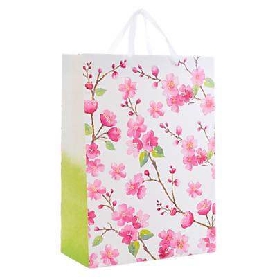 Image of John Lewis & Partners Blossom Flitter Gift Bag