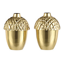 Buy John Lewis Acorn Salt and Pepper Shakers, Gold, Set of 2 Online at johnlewis.com