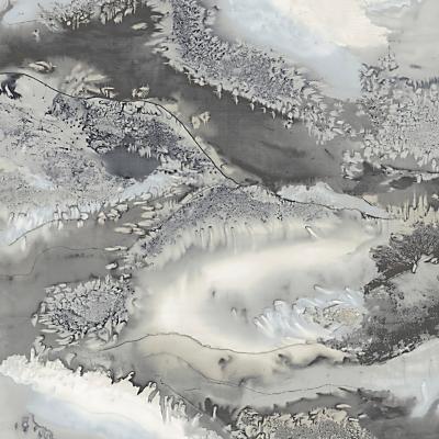Image of Anthology Obsidian Wallpaper Panel Snowflake, 111629 Panel B