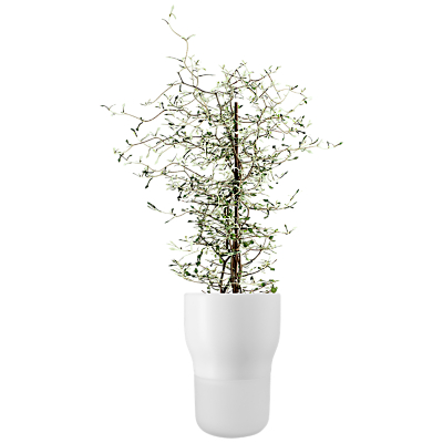 Eva Solo Self Watering Plant Pot