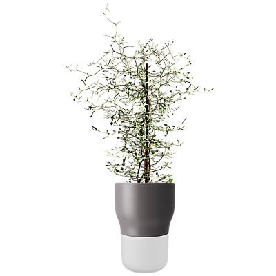 Eva Solo Self Watering Plant Pot