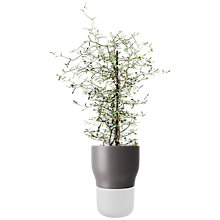 Buy Eva Solo Self Watering Plant Pot Online at johnlewis.com