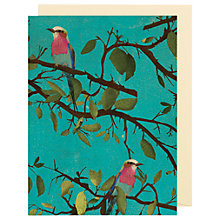 Buy Lagom Designs Roller Bird Notecards, Pack of 5 Online at johnlewis.com