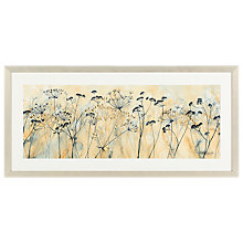 Buy Catherine Stephenson - Cow Parsley Framed Print, 104.5 x 49.5cm Online at johnlewis.com