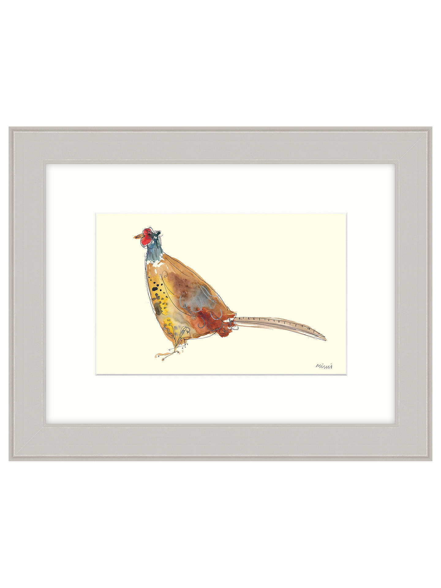 BuyMimi Emmet - Golden Pheasant Framed Print, 47 x 37cm Online at johnlewis.com