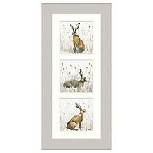 Buy Mimi Emmet - Husk Of Hares Triptych Framed Print, 57 x 27cm Online at johnlewis.com