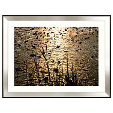 Buy Mike Shepherd - Lillies Framed Print,111 x 85cm Online at johnlewis.com