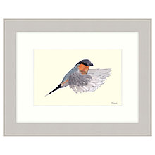 Buy Mimi Emmet - Finch Framed Print, 47 x 37cm Online at johnlewis.com