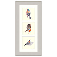 Buy Mimi Emmet - Robin Chaffinch & Finch Trio Framed Print, 57 x 27cm Online at johnlewis.com