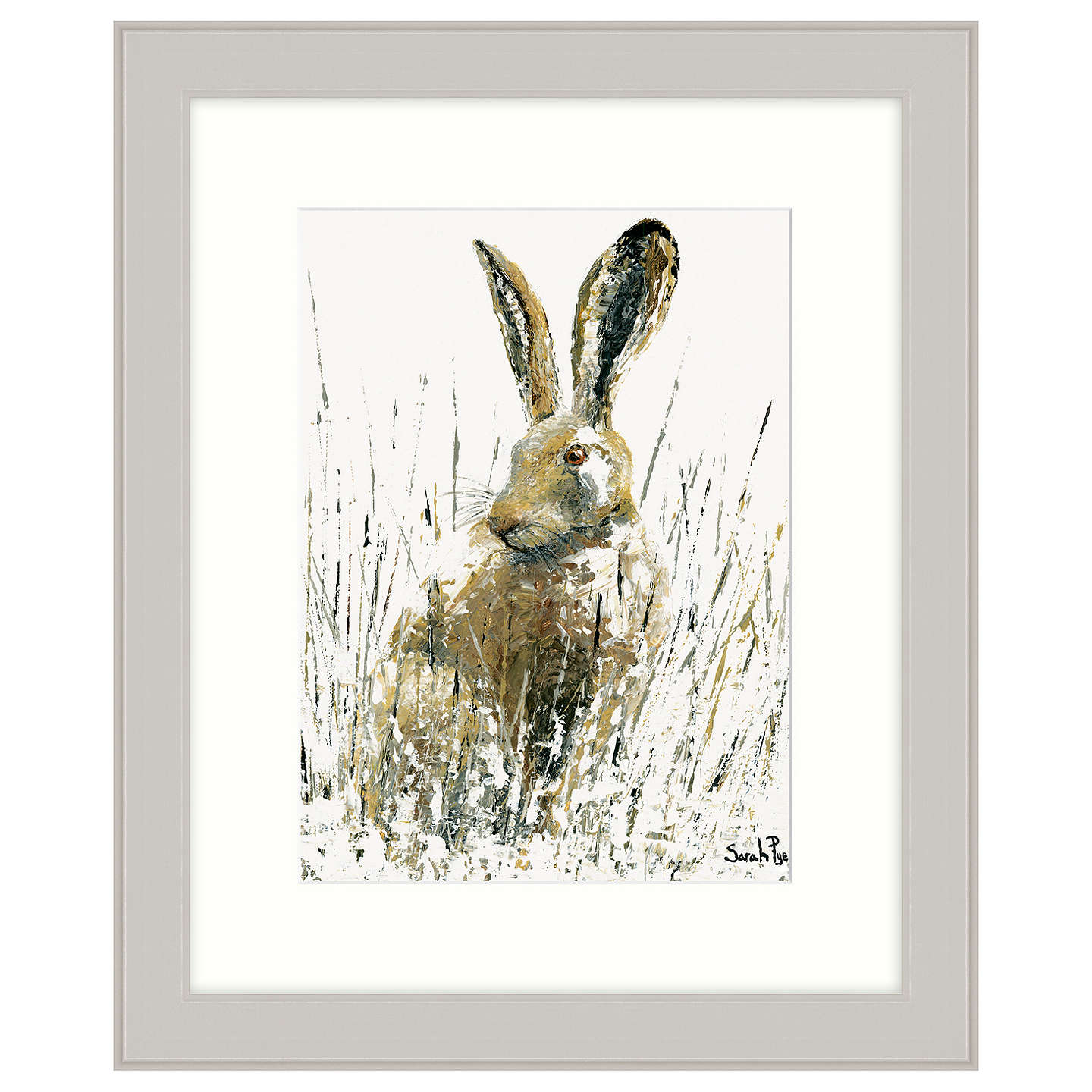 BuySarah Pye - Snow Hare Framed Print, 67 x 57cm Online at johnlewis.com