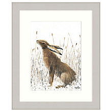 Buy Sarah Pye - A Quick Nibble Framed Print, 67 x 57cm Online at johnlewis.com