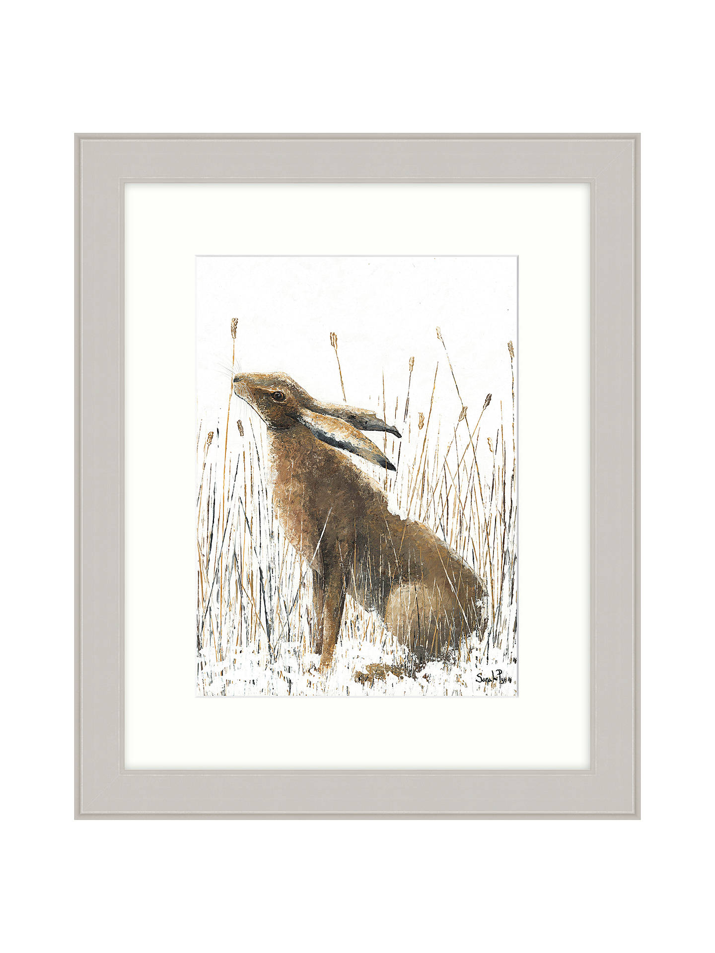 BuySarah Pye - A Quick Nibble Framed Print, 67 x 57cm Online at johnlewis.com