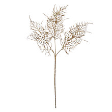 Buy John Lewis Into the Woods Asparagus Fern Spray, Gold Online at johnlewis.com