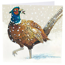 Buy Art Marketing Festive Pheasant Charity Cards, Pack of 6 Online at johnlewis.com