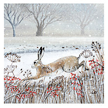 Buy Museums and Galleries Leaping Hare Charity Christmas Cards, Pack of 8 Online at johnlewis.com