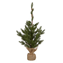 Buy John Lewis Mini Pine Tree In Hessian Sack Online at johnlewis.com