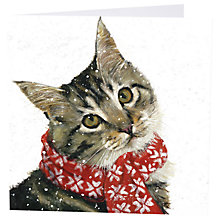 Buy Art Marketing Ollie Charity Cards, Pack of 6 Online at johnlewis.com