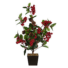 Buy John Lewis Potted Cone and Holly Berry Bush Online at johnlewis.com