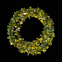 Buy John Lewis 24 LED Leaf Christmas Lights Online at johnlewis.com