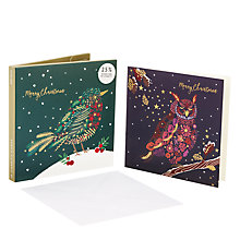 Buy John Lewis Foliage Birds Charity Christmas Card, Pack of 10 Online at johnlewis.com