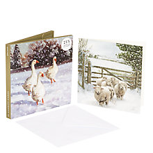 Buy John Lewis Sheep and Geese Charity Christmas Card, Pack of 10 Online at johnlewis.com