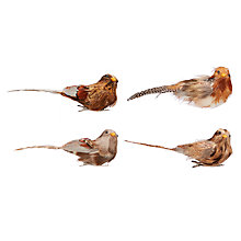 Buy John Lewis Into the Woods Woodland Bird Clip On Tree Decoration, Pack of 4 Online at johnlewis.com