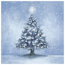 Buy Almanac Midnight Fir Charity Christmas Cards, Pack of 8 Online at johnlewis.com