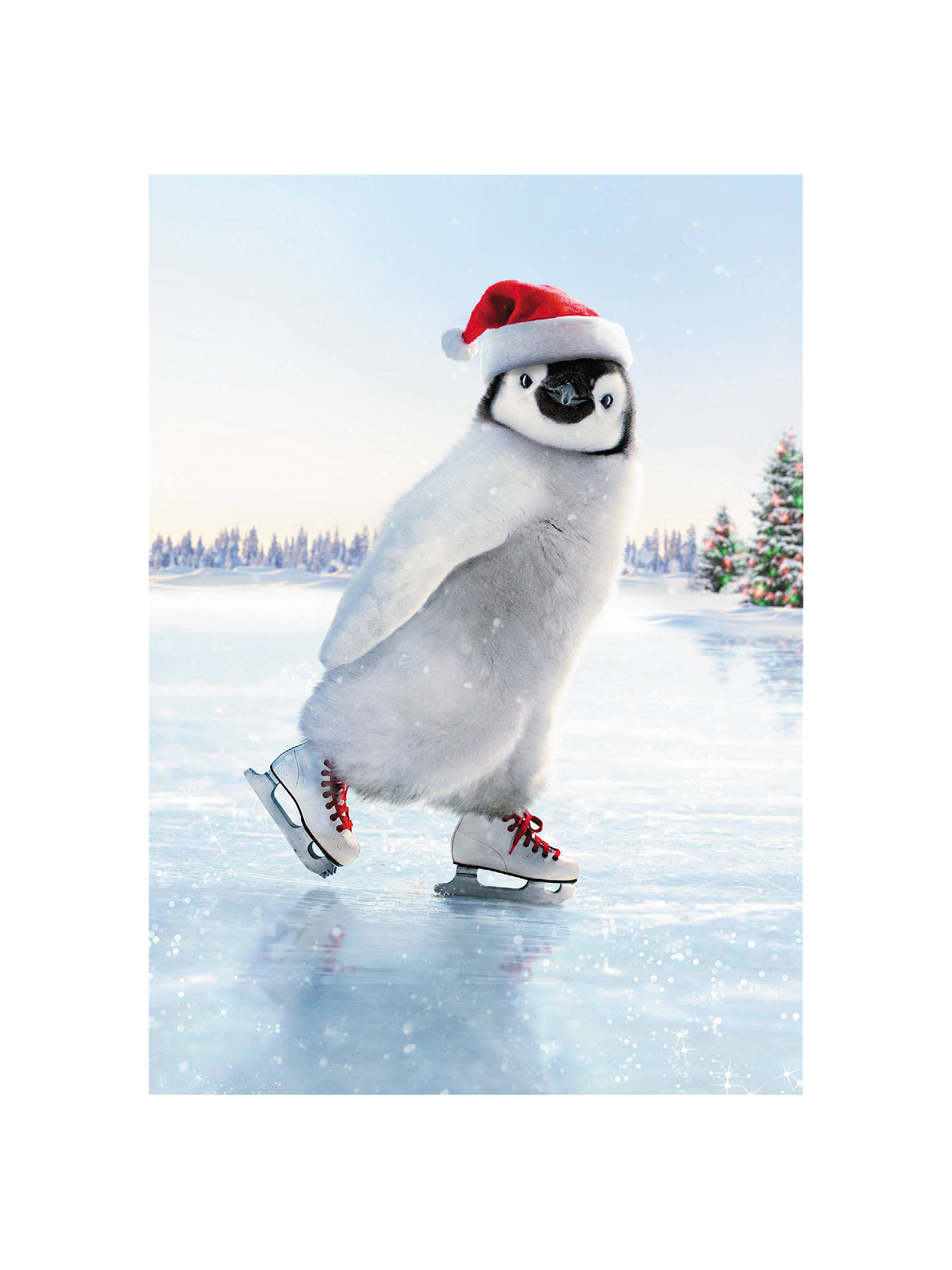 Avanti Penguin Ice Skater Charity Christmas Cards, Pack of 8 at John ...