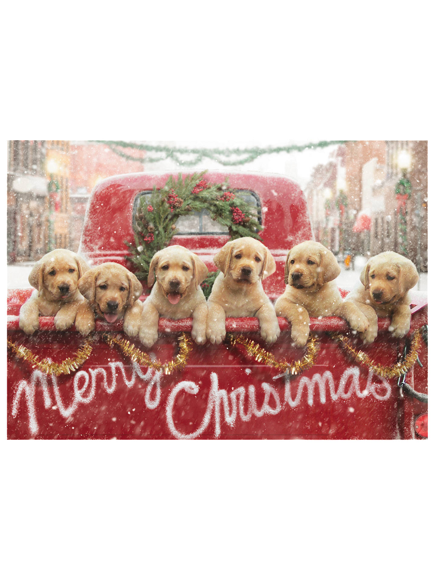 Avanti Truck Full of Puppies Charity Christmas Cards, Pack of 8 at ...
