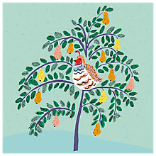 Buy Almanac In a Pear Tree Charity Christmas Cards, Pack of 6 Online at johnlewis.com