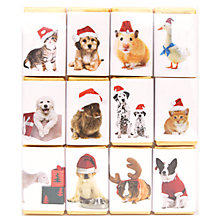 Buy House of Dorchester Pets In Hats Chocolate Slims, 120g Online at johnlewis.com